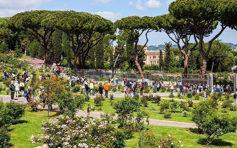 Rose Garden in Rome